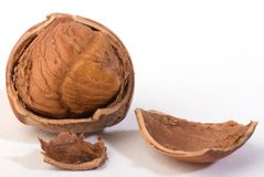 Hazelnut. A hazelnut. it is good omega 3 reserved Royalty Free Stock Photo