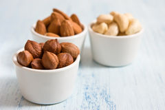 Hazelnut, almonds and acajou. In the white dishes stock photography
