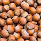Hazelnut background Stock Photo