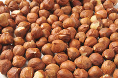 Hazelnut background Royalty Free Stock Photos