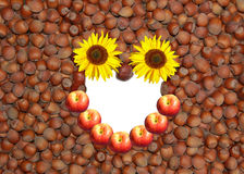 Hazelnut background and smiling face Stock Image