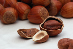 Hazelnut background Royalty Free Stock Photography