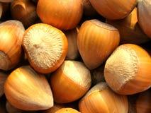Hazelnut background texture Stock Photography