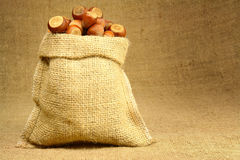 Hazelnut in Bag Stock Photography