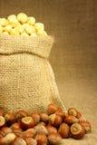 Hazelnut in Bag Royalty Free Stock Photo
