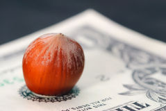 Hazelnut and banknote Royalty Free Stock Photo