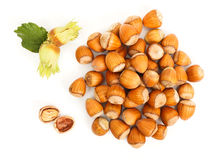Hazelnut bunch Stock Photos