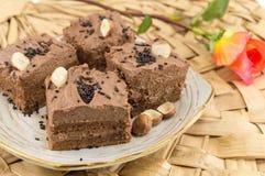 Hazelnut cake covered with chocolate cream Stock Photography