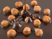 Hazelnut chocolate Stock Image