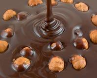 Hazelnut chocolate Royalty Free Stock Photos