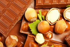 Hazelnut chocolate Stock Images