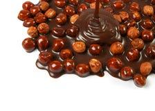 Hazelnut chocolate Royalty Free Stock Photography