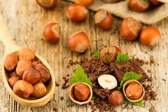 hazelnut with chocolate bars and green leaves on wooden background Stock Photography