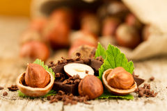 Hazelnut with chocolate bars and green leaves on wooden background Royalty Free Stock Image
