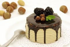 Hazelnut and chocolate cake Royalty Free Stock Image