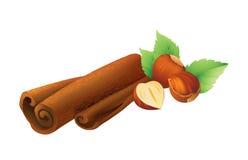 Hazelnut  and cinnamon Stock Photography