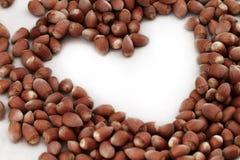 Hazelnut close up Stock Image