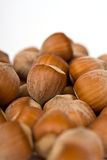 Hazelnut close-up isolated Stock Image