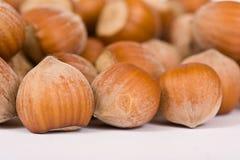 Hazelnut close-up isolated Royalty Free Stock Photo