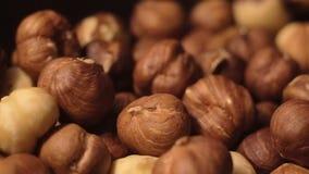 Hazelnut close up slow motion. stock video