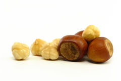 Hazelnut Closeup Royalty Free Stock Photography