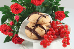 Cookies with chocolate and red currant Royalty Free Stock Images