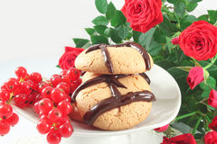 Cookies with chocolate and red currant Royalty Free Stock Image
