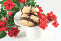Cookies with chocolate and red currant Royalty Free Stock Photography