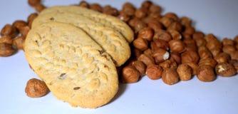 Hazelnut cookies Stock Image