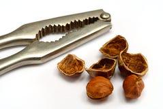Hazelnut cracked open with nut cracker Stock Photo