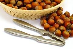 Hazelnut cracked open with nut cracker Stock Photos