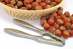 Hazelnut cracked open with nut cracker isolated Royalty Free Stock Photo