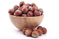 Hazelnut in a cup Royalty Free Stock Photos