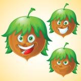 Hazelnut face expression cartoon character set Royalty Free Stock Photos