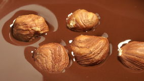 Hazelnut fall into melted chocolate stock video