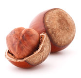 Hazelnut or filbert nut isolated on white background cutout Stock Image