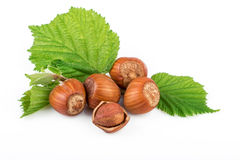 Hazelnut or filbert nuts with leaves on white background Stock Photo