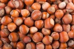Hazelnut food Royalty Free Stock Photo