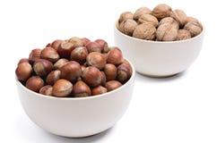 Hazelnut in the foreground Stock Image