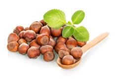 Hazelnut and fresh mint leaves isolated on white Stock Photo