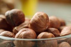 Hazelnut in glass bowl closeup shot, selective focus.  royalty free stock image