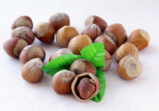 Hazelnut with a green leaf Stock Image