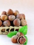 Hazelnut with a green leaf Stock Photo