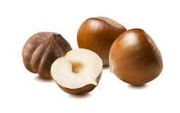 Hazelnut group whole half isolated on white background Stock Photos
