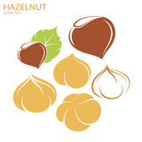 Hazelnut. Icon set Royalty Free Stock Image