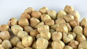 Hazelnut Macro View. Food Ingredient Healthy and Energy video stock video