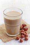Hazelnut mleko Obraz Royalty Free