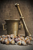 Hazelnut and mortar Royalty Free Stock Photos