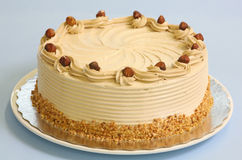Hazelnut mousse cake Royalty Free Stock Photography