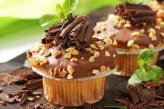 Hazelnut muffins Fotografia Royalty Free